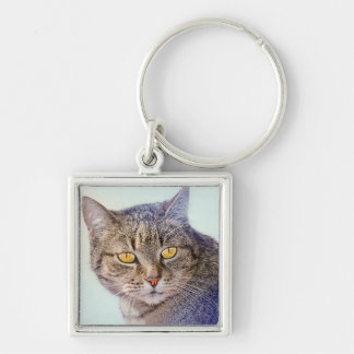 Beautiful yellow eyed cat portrait Silver-Colored square keychain