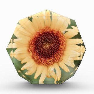 Beautiful Yellow Flower Acrylic Award