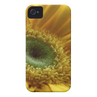 Beautiful Yellow Flower in the Morning Light iPhone 4 Case-Mate Case