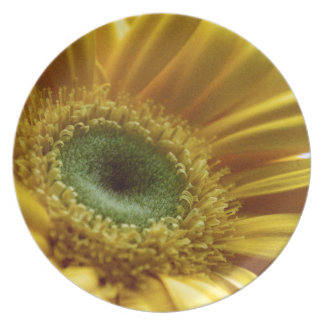 Beautiful Yellow Flower in the Morning Light Melamine Plate