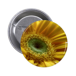 Beautiful Yellow Flower in the Morning Light Pinback Button