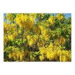 Beautiful yellow flowers of the Golden Rain Tree-2 5x7 Paper Invitation Card