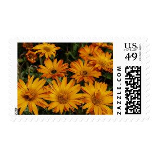 Beautiful Yellow Orange Floral Stamps