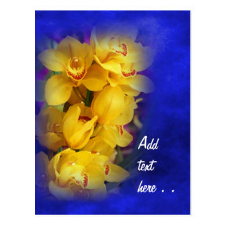 Beautiful Yellow Orchids on Deep Blue Background Postcard