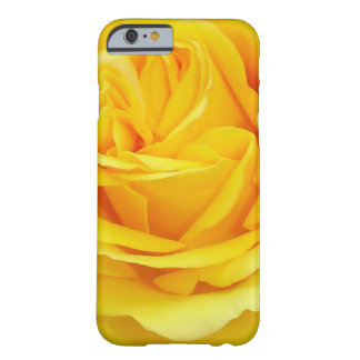 Beautiful Yellow Rose Closeup Barely There iPhone 6 Case