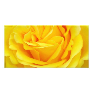 Beautiful Yellow Rose Closeup Picture Card