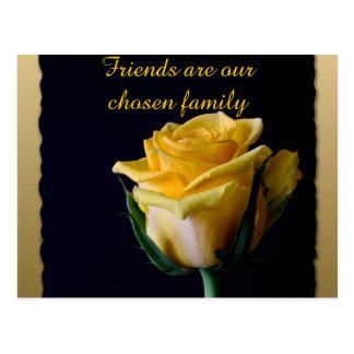 Beautiful Yellow Rose on Black Friendship Postcard