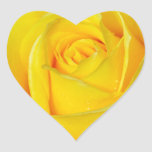Beautiful yellow rose petals heart stickers