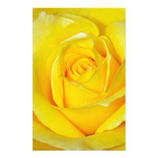 Beautiful yellow rose petals stationery
