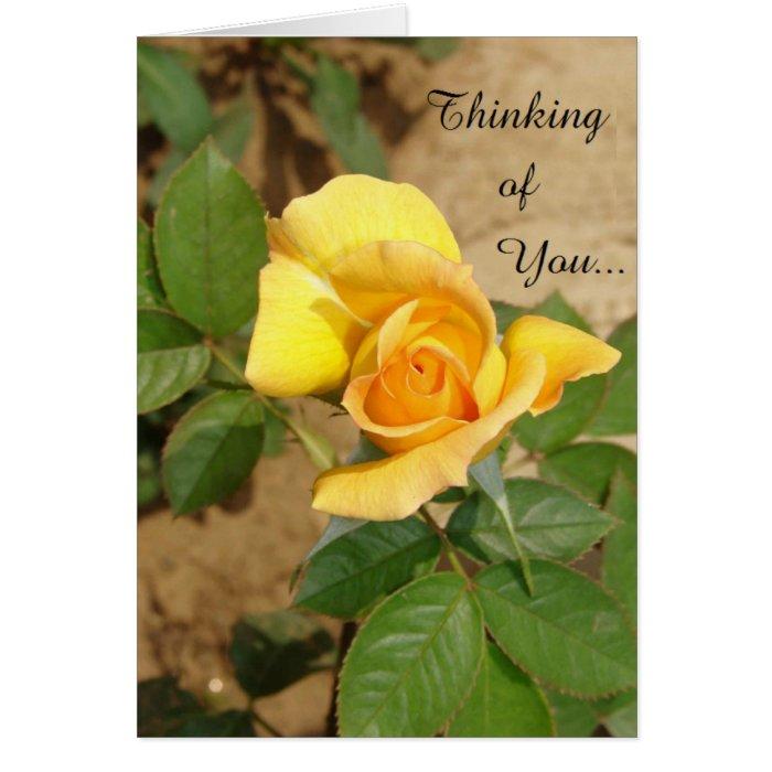 Beautiful Yellow Rose Thinking of You Card | Zazzle