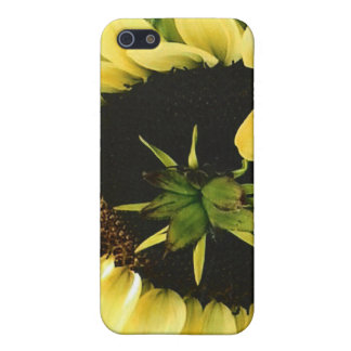 Beautiful Yellow Sunflower Cover For iPhone SE/5/5s