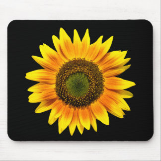 Beautiful yellow sunflower on black mousepad
