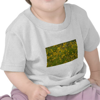 Beautiful Yellow Wildflowers Shirt