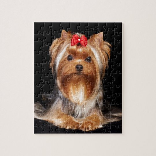 Beautiful Yorkshire Terrier Jigsaw Puzzle | Zazzle.com