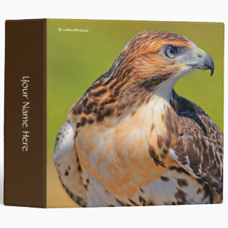 Beautiful Young Red-Tailed Hawk Binder