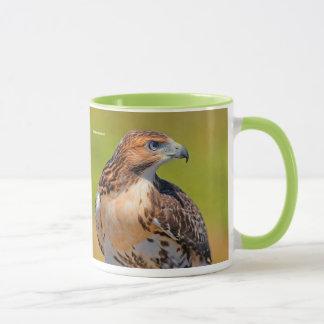 Beautiful Young Red-Tailed Hawk Mug