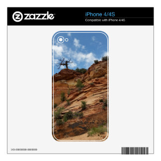 Beautiful Zion National Park Decal For The iPhone 4