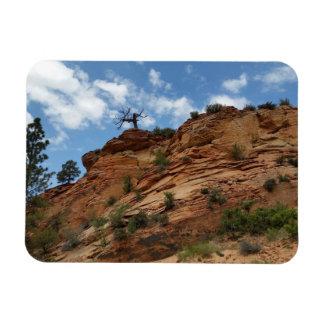 Beautiful Zion National Park Rectangular Photo Magnet