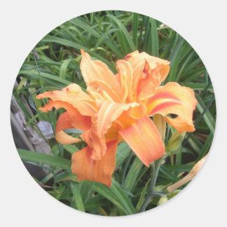 BEAUTIFULL ORANGE FLOWER CLASSIC ROUND STICKER