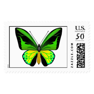 Beautifull Ornithoptera butterfly Postage