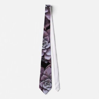Beautifully patterned succulent plants tie