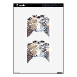 Beautiul Snow Leaopard Xbox 360 Controller Skin