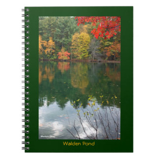Beauty at its Best: Walden Pond Note Books