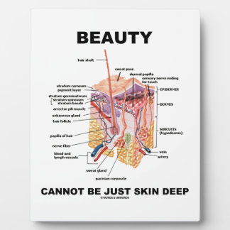 Beauty Cannot Be Just Skin Deep (Skin Layers) Plaque