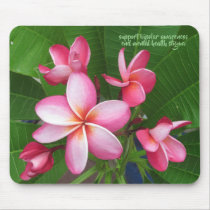beauty comes in many forms mouse pad