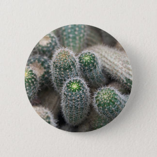 beauty flower photography by fotoko pinback button