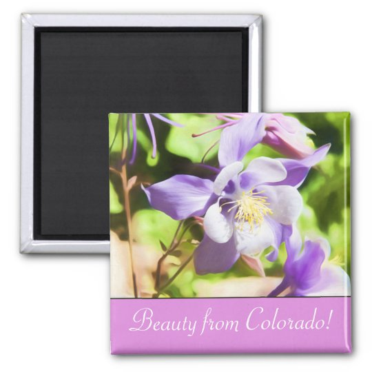 Beauty From Colorado Rocky Mountain Columbine Magnet