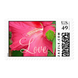 Beauty In A Flower Postage Stamps