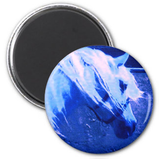 Beauty in Blue - Andalusian Stallion Magnet
