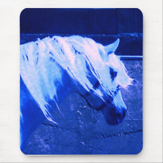 Beauty in Blue - Andalusian Stallion Mouse Pad