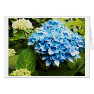 Beauty in Blue Card