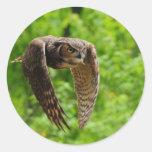 Beauty in flight round stickers