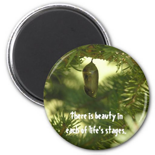 Beauty in LIfe Refrigerator Magnets