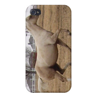 Beauty in Motion iPhone case iPhone 4/4S Case