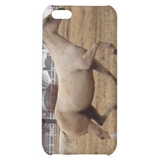Beauty in Motion iPhone case iPhone 5C Covers