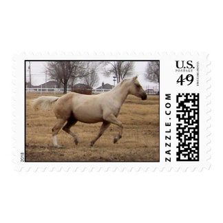 Beauty in Motion Postage Stamps