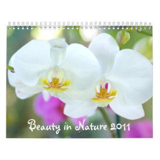 Beauty in Nature 2011 Calendar