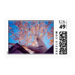 Beauty in Nature Postage Stamps