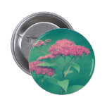Beauty in Pink Pinback Button