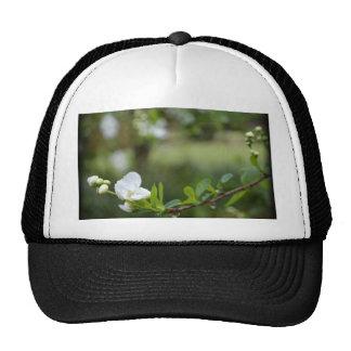 Beauty in Simple Things Trucker Hat