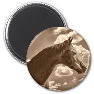 Beauty in the clouds magnet