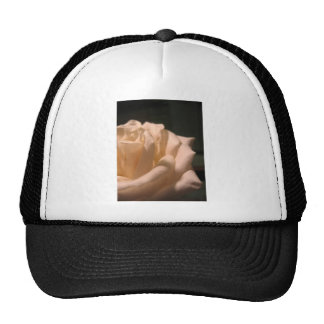 Beauty In The Dark Trucker Hat