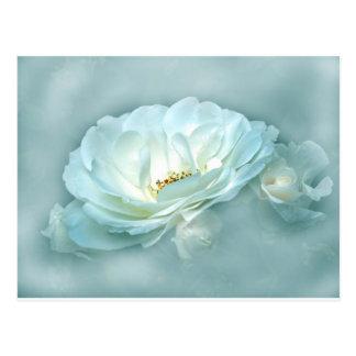 beauty in the mist blue postcard