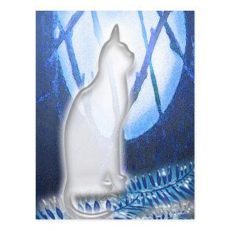 Beauty in White Postcard