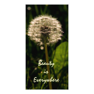 Beauty is Everywhere Card