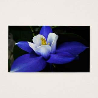beauty of a columbine business card